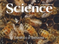 ScienceCover11-08