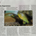 Natural History March 2016